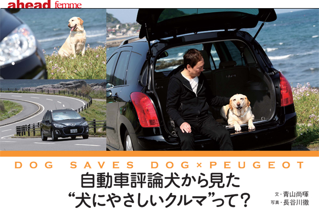 "【ahead femme×オートックワン】-ahead 5月号- 自動車評論犬から見た""犬にやさしいクルマ""って?"