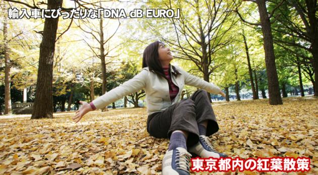 竹岡圭のドライブvol.21 東京都内の紅葉散策