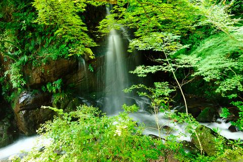 到着したのは万葉公園。滝があります。