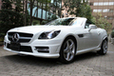  SLK200 BlueEFFICIENCY MT -21-