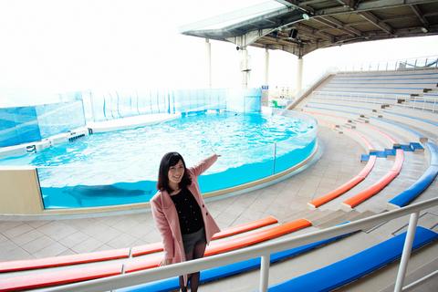 ショータイムには、バンドウイルカやカマイルカたちが、素晴らしいパフォーマンスを披露してくれます。(@新江ノ島水族館)