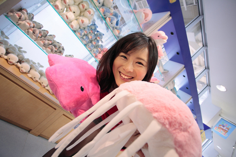 「えのすい」こと新江ノ島水族館は、おみやげ関係のショップも充実。ぬいぐるみも多数揃えてあります!(@新江ノ島水族館)