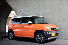 その名の通り、明るくて情熱的なパッションオレンジ。人気色。