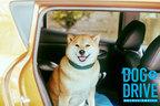 """犬の快適さを考えたクルマ選びとは?インスタで240万人に愛される""""柴犬のまるたろう""""が解説!?"""