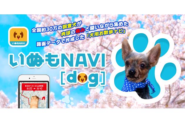 ゼンリン、犬用お散歩ナビ「いぬもNAVI」をリリース