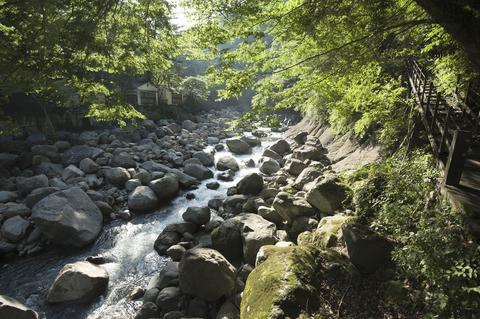 実は、川を渡ると、また別の露天風呂が・・・。対星館には、5本もの源泉があるのだとか。